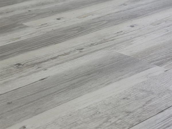Click-Vinyl Check One Fortuna Kiefer Standard Collection
